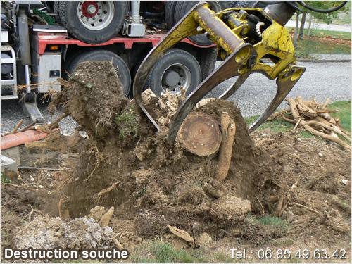 Destruction souche d 39 arbre tp bois ariege entreprise - Comment fabriquer un miroir en bois flotte ...